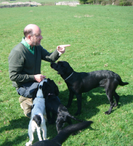Colin Rose training dogs
